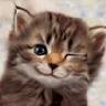 Аватар для Екатерина Сатырёва